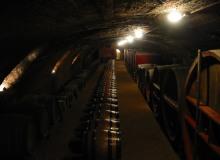 galerie-cave (14)