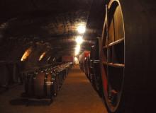 galerie-cave (2)