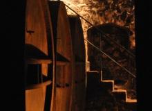 galerie-cave (6)