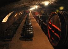 galerie-cave (7)